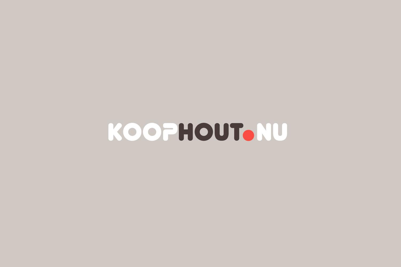 Webdesigner Maastricht, Koophout.nu webshop huisstijl en website design